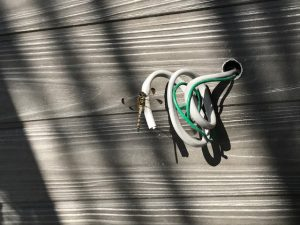 新築 平屋 外壁 トンボ